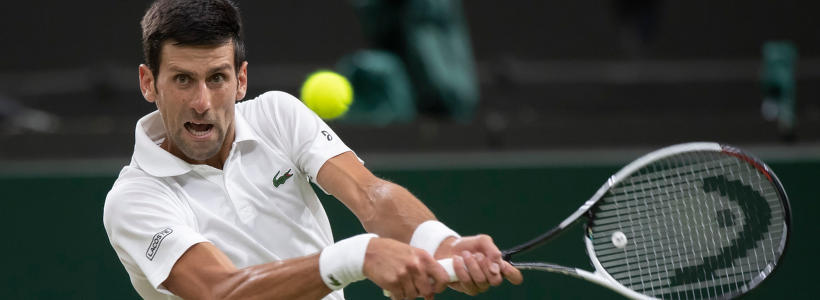Wimbledon 2019 British Tennis Expert Going Big On Djokovic Bautista Agut Semifinal Clash Sportsline Com