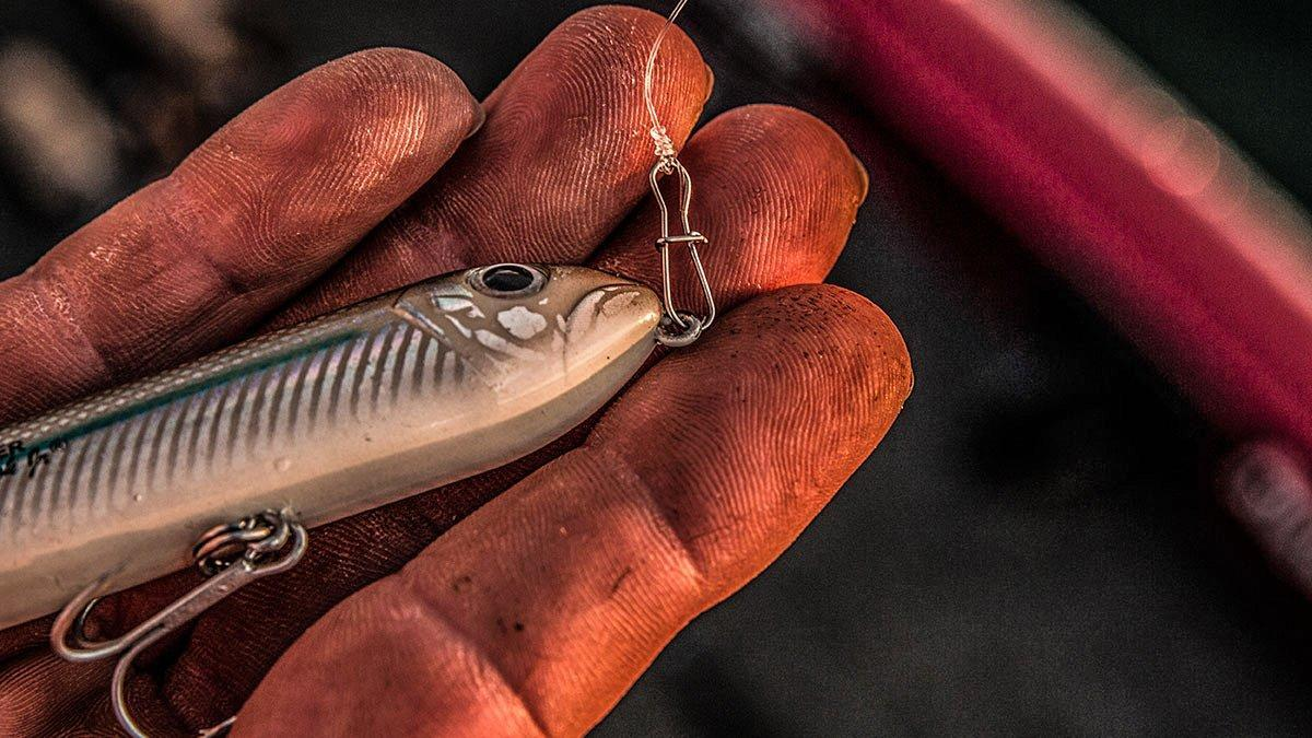4 Topwater Lures You'll Need this Fall