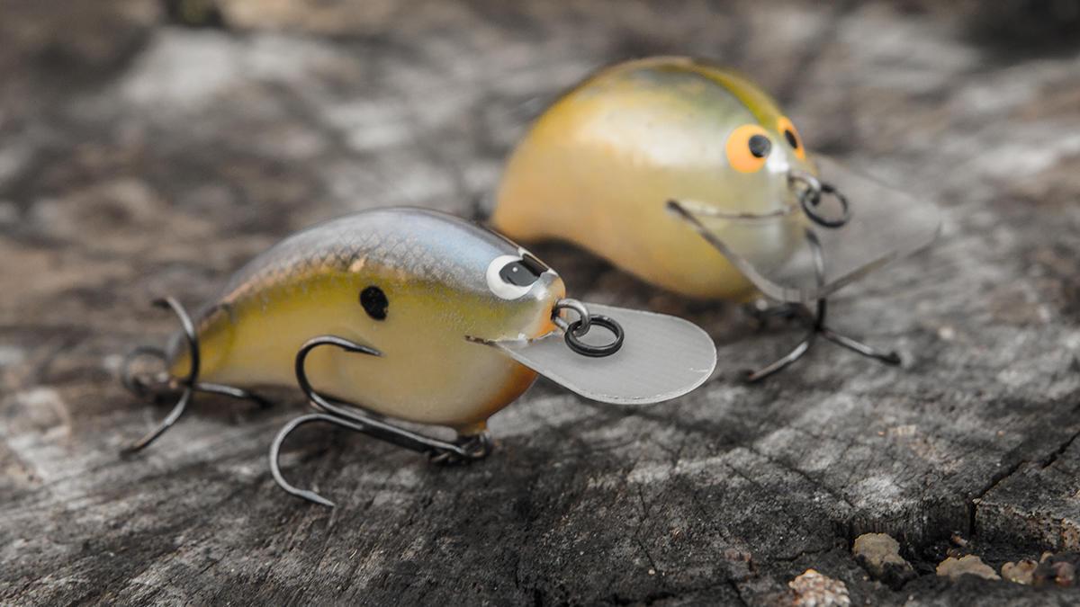 flat-sided-crankbait-for-winter-bass-fishing.jpg