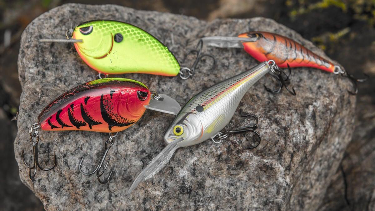 crankbaits-for-winter-bass-fishing.jpg