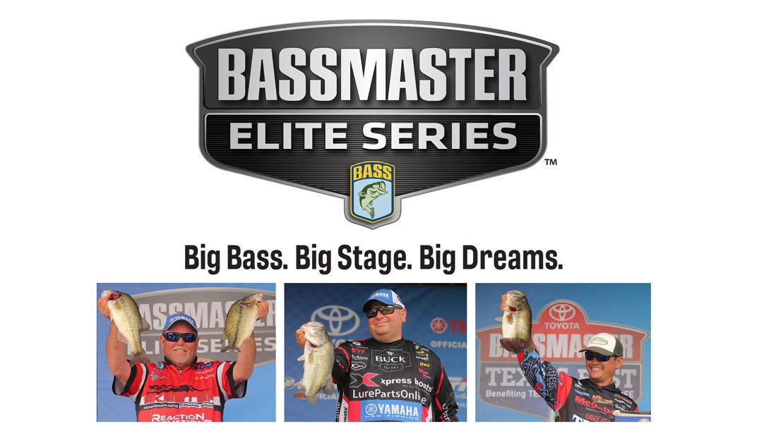 bigbass-bigstage-bigdreams.jpg