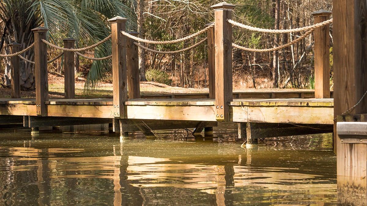 dock-walkway.jpg