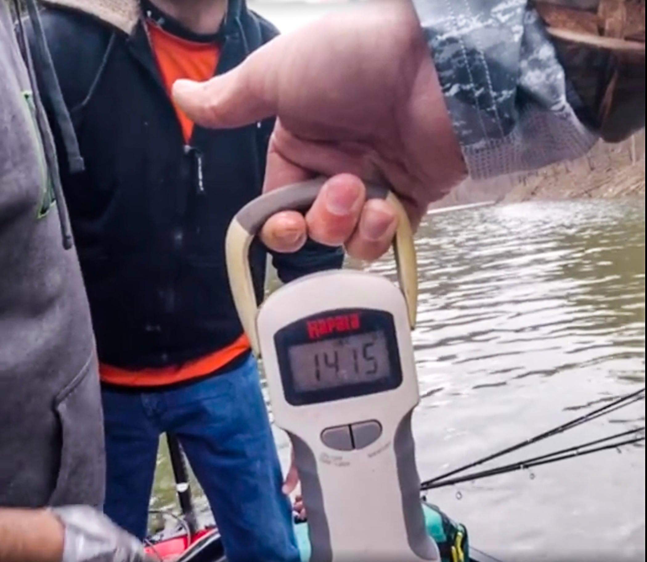 scale-broken-bow-bass-screen-shot.jpg