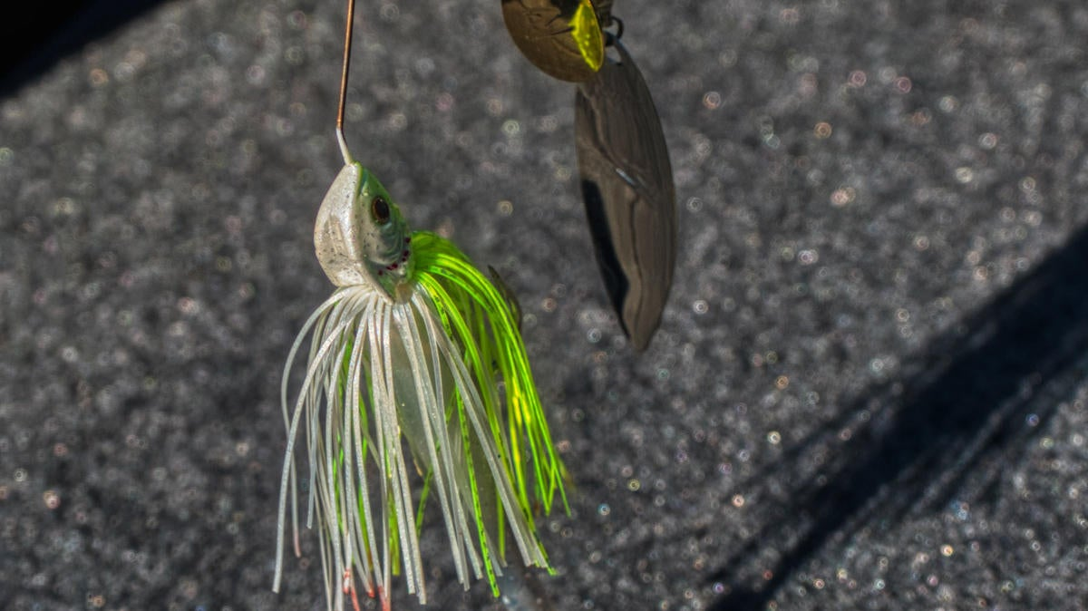 Z-Man SlingBladeZ Spinnerbait Review - Wired2Fish com