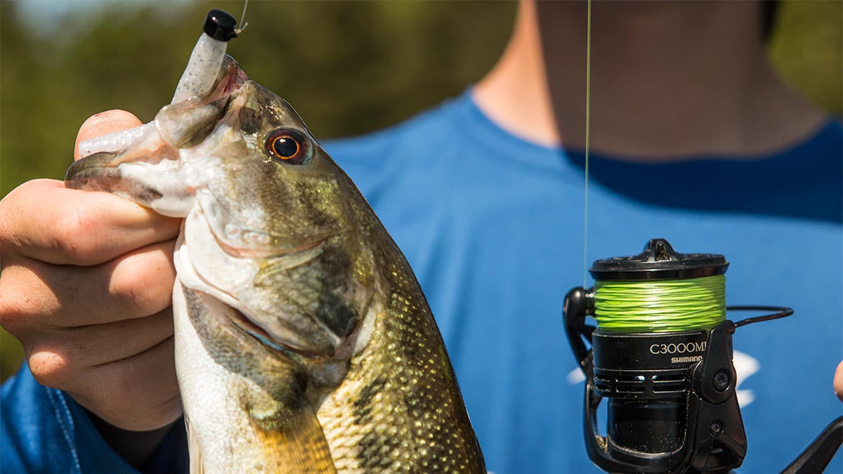 seaguar-smackdown-flash-green-braided-line-with-spotted-bass.jpg