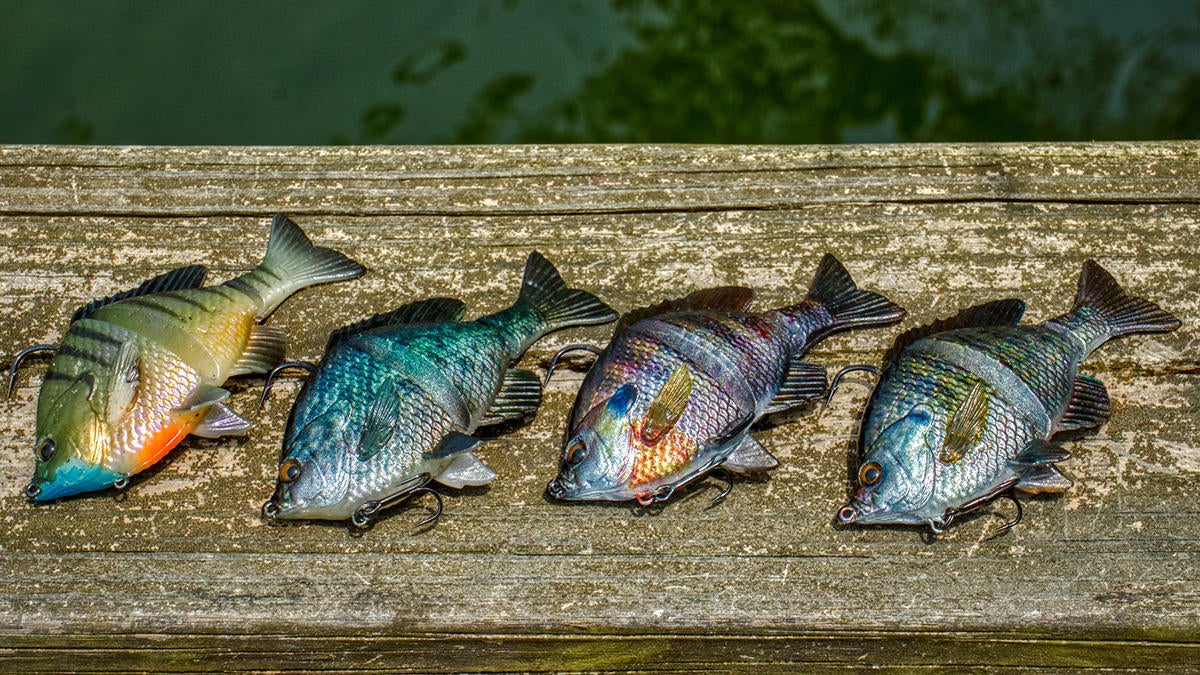 savage-gear-colors-3d-bluegill-1200px.jpg