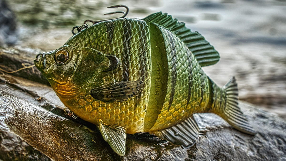 savage-gear-3d-bluegill-5-inch-1200px.jpg