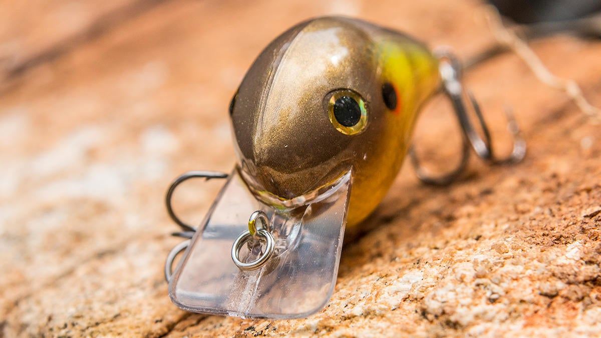 norman-fat-boy-crankbait-bill.jpg
