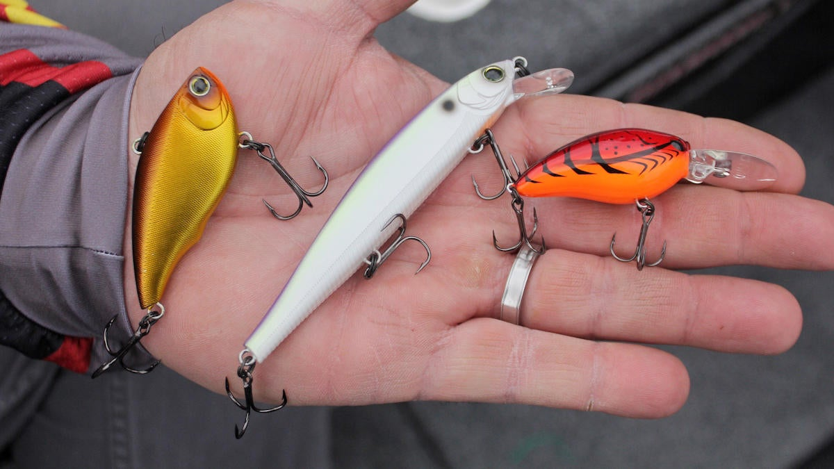 must-have-prespawn-baits-for-bass-fishing-3.jpg