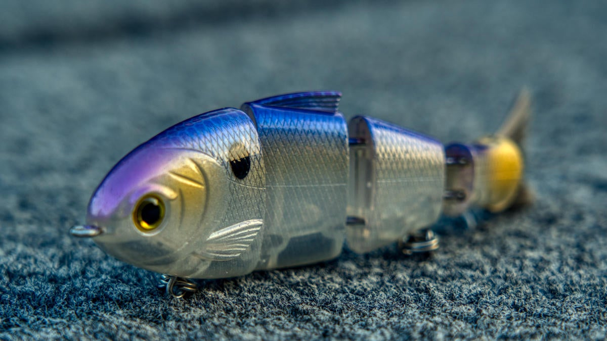 catch-co-baby-bull-shad-profile.jpg