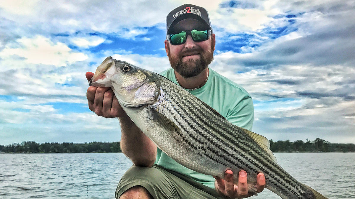 how-to-catch-striped-bass-in-the-summer-5.jpg