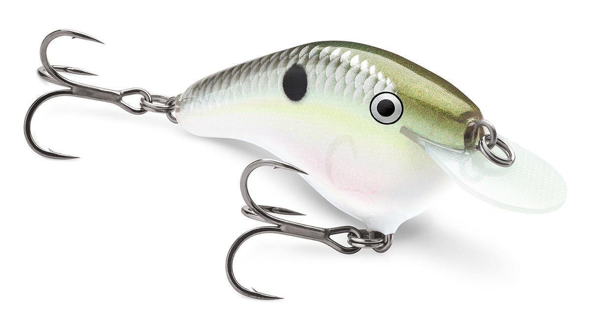 rapala-fishing-lures-1.jpg