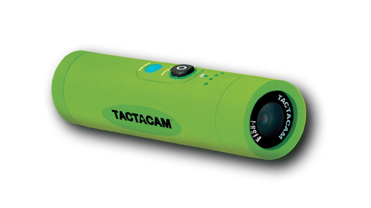 tactacam-fish-i.jpg