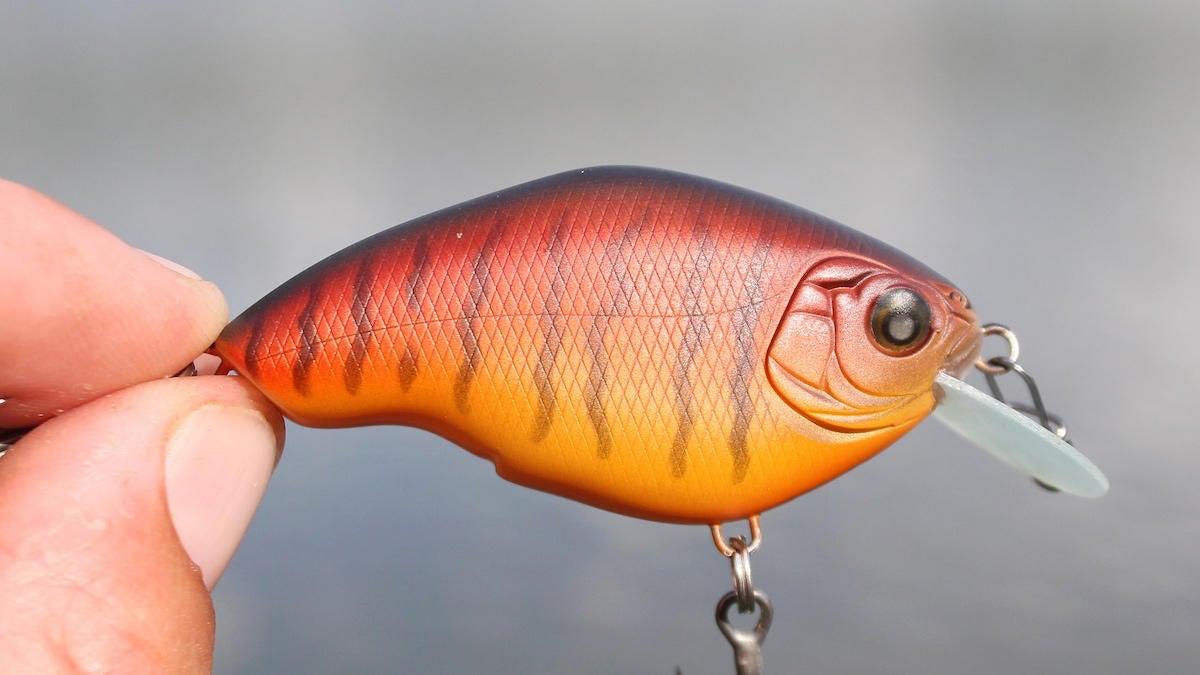 nishine-chippawa-rb-slow-float-crankbait-review-1.jpg