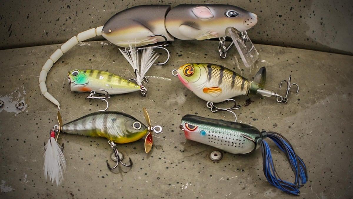 fine-tuning-bass-fishing-gear-for-shallow-summer-bass-3.jpg