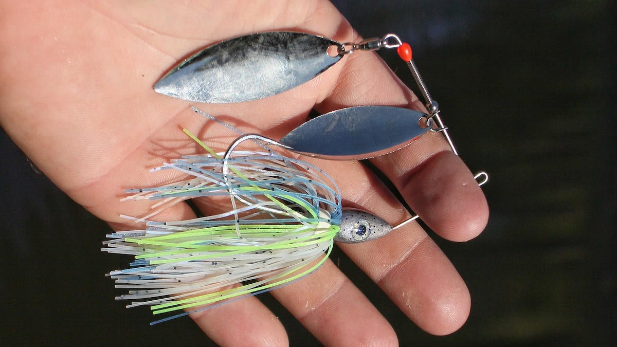 fall-spinnerbait-fishing-selection-1.jpg