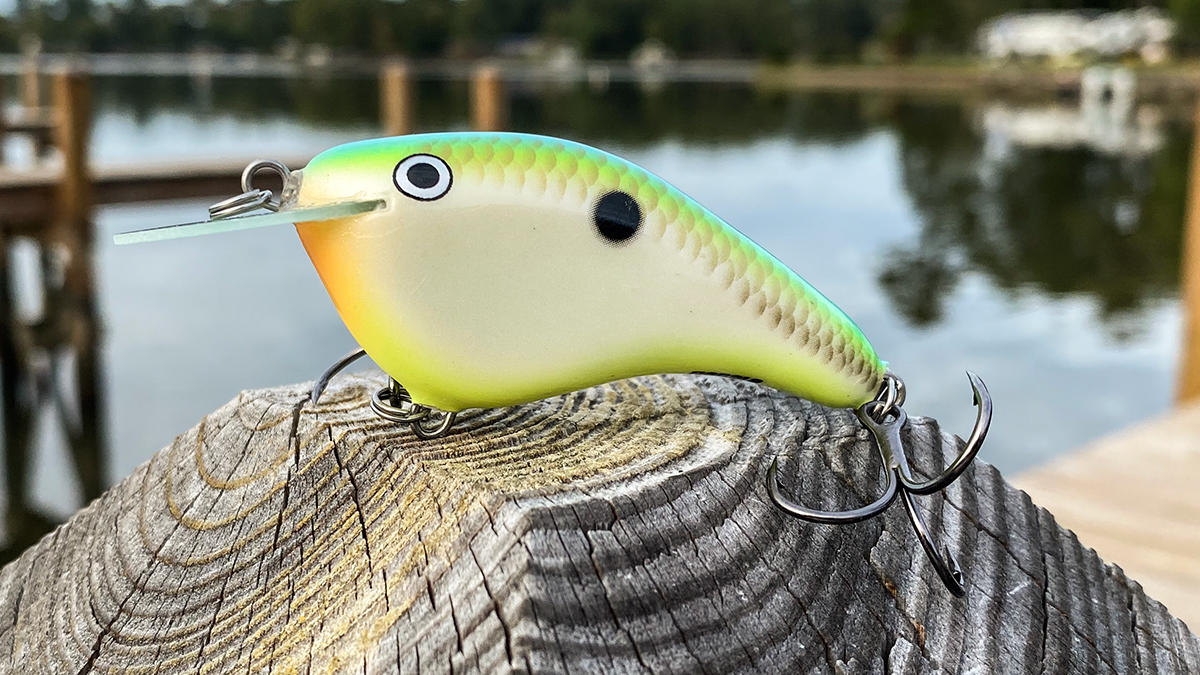 fall-bass-fishing-crankbaits-1.jpg