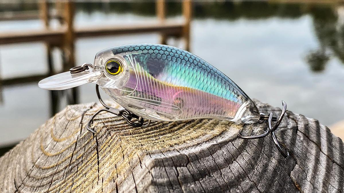 fall-bass-fishing-crankbaits-2.jpg