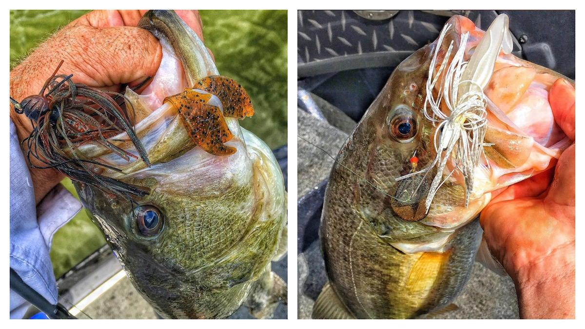 bass-fishing-lessons-i-wish-i-learned-earlier-4.jpg