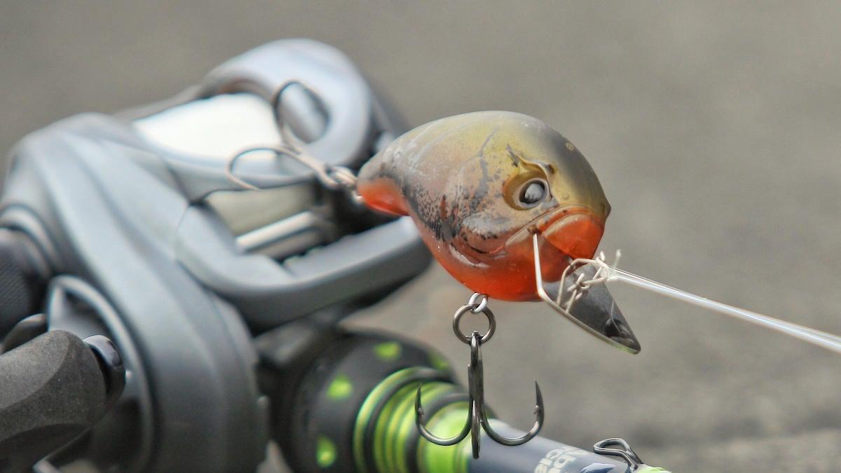 13-fishing-jabber-jaw-crankbait-review-1.jpg
