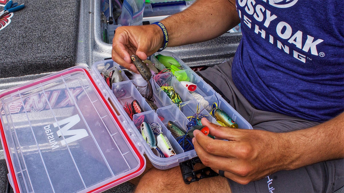 late-spring-bass-fishing-for-fry-guarding-bass-3.jpg
