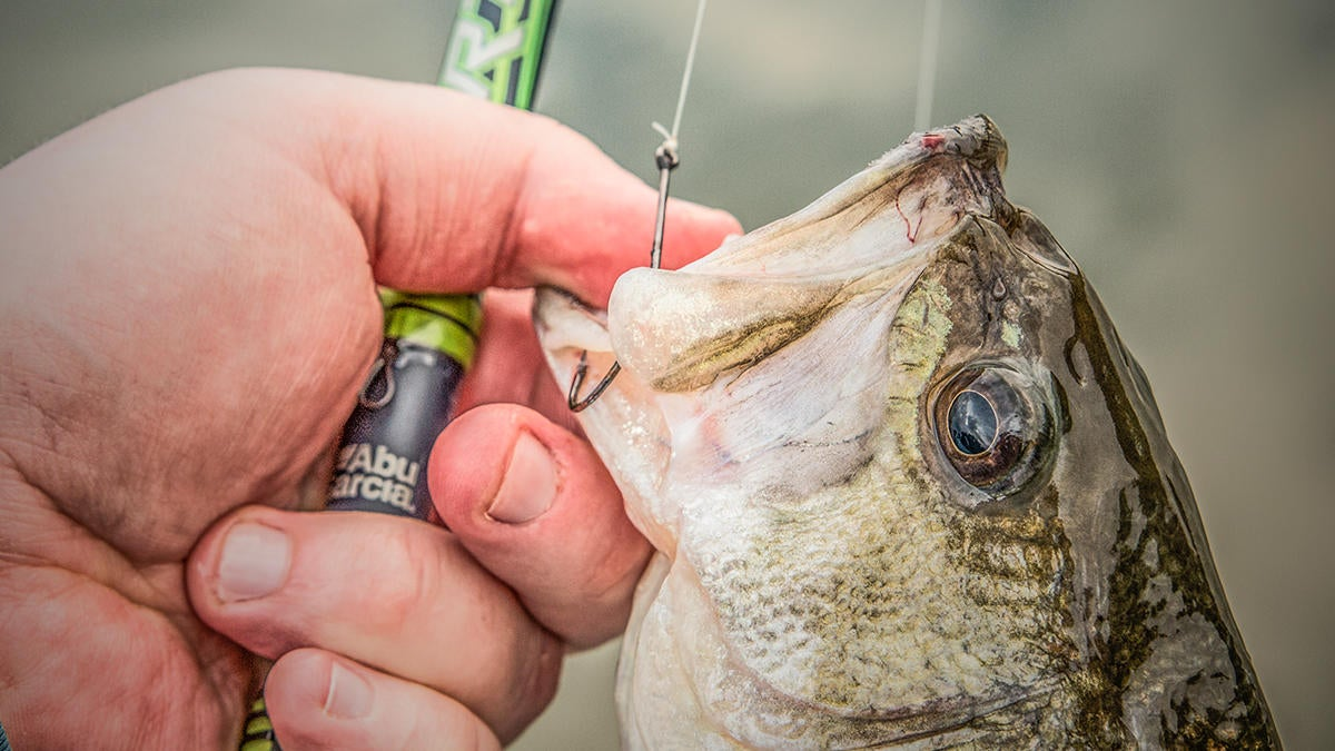 abu-garcia-virtual-spinning-reel-for-bass-fishing-review-1.jpg