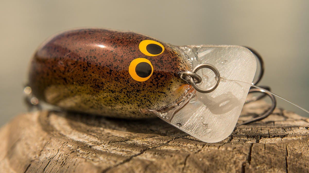 bagley-pro-sunny-b-crankbait-review-for-bass-fishing-6.jpg