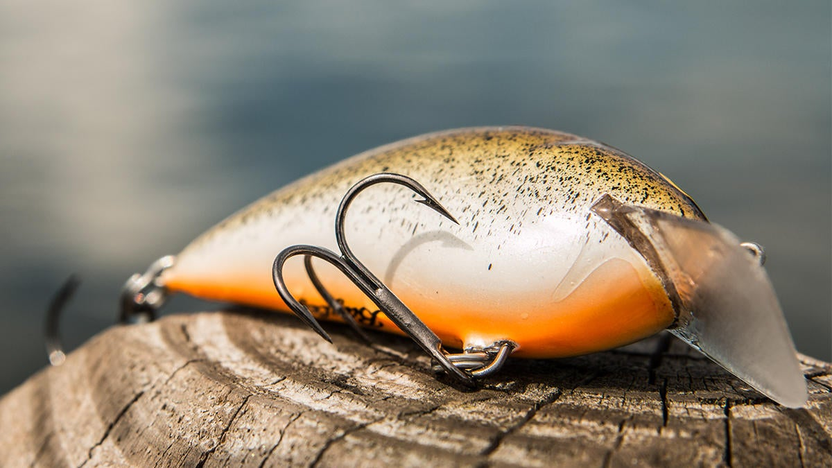 bagley-pro-sunny-b-crankbait-review-for-bass-fishing-5.jpg