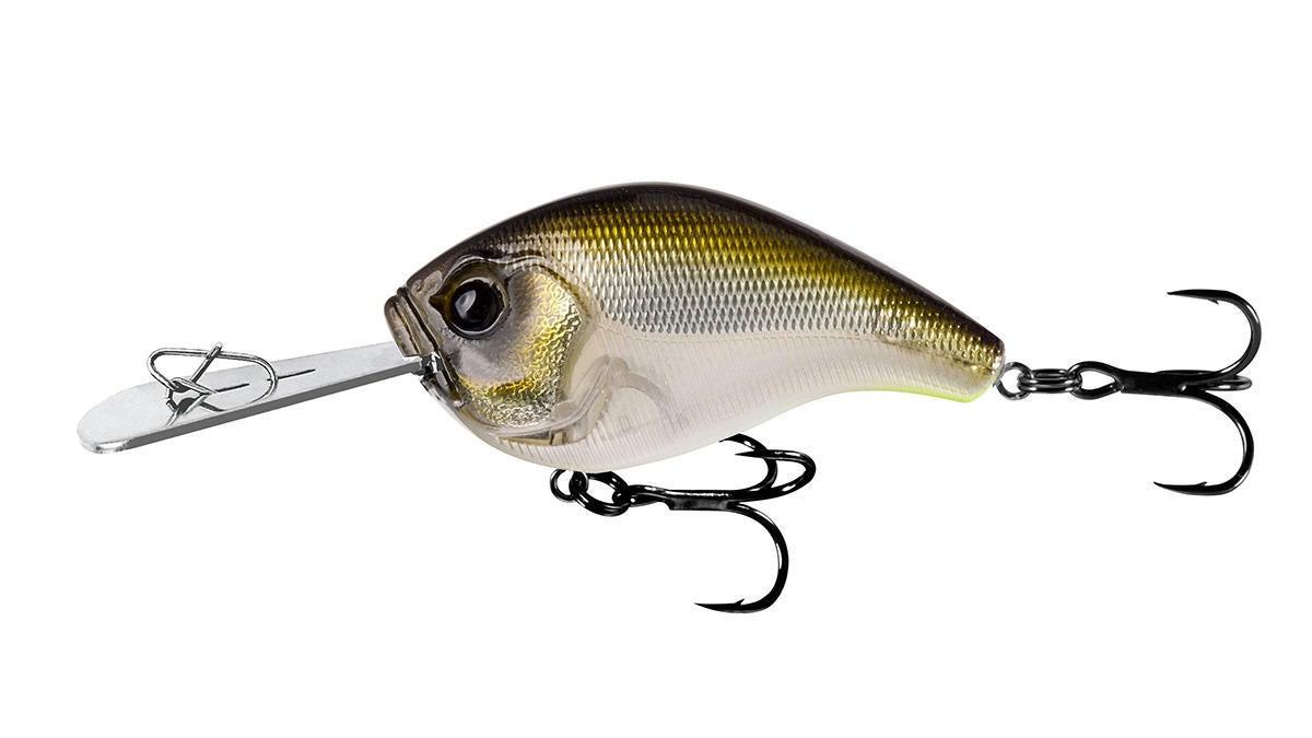 13-fishing-6.jpg