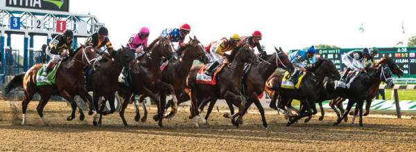 2019 haskell invitational  horse racing guru reveals full