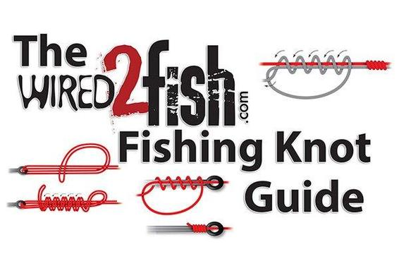 15 Fishing Knots Every Angler Should Know - Wired2Fish com