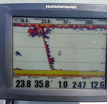 5 Fish Finder Tips to Improve Walleye Fishing - Wired2Fish com