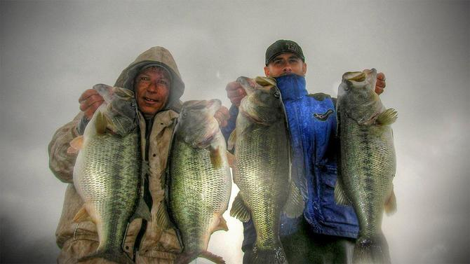 Land Your Biggest Bass with Big Swimbaits - Wired2Fish com