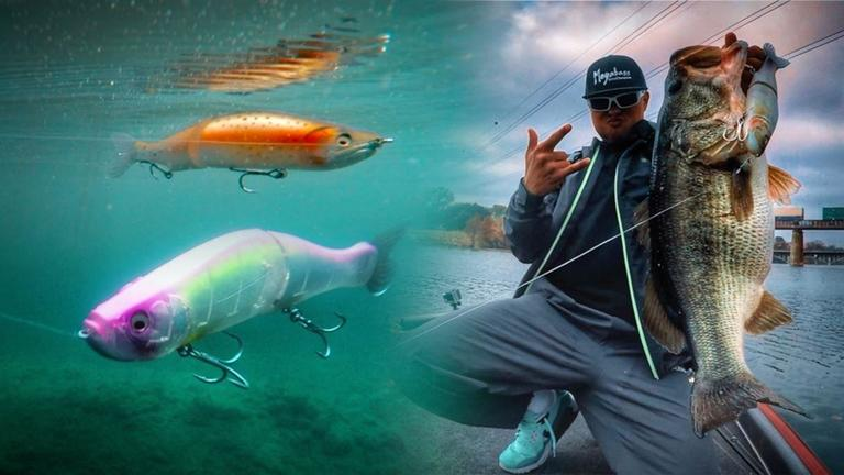 3f6614f6c 3 Proven Methods for Fishing Glide Baits That Produce Giant Bass -  Wired2Fish.com