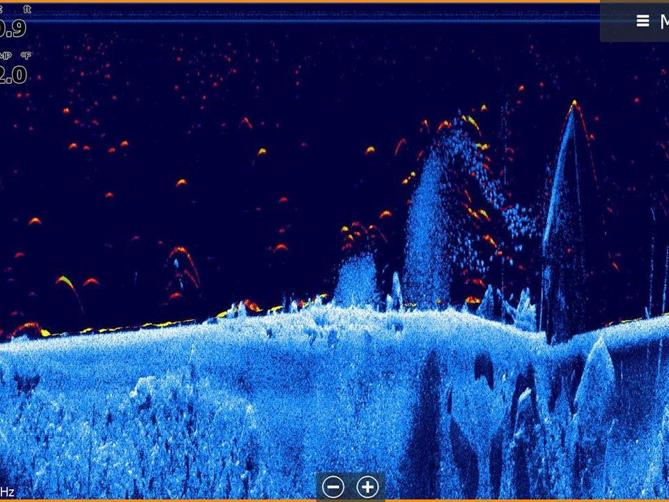 Lowrance Releases New FishReveal Update - Wired2Fish com