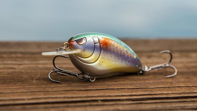 Why You Should Sand Your Crankbaits - Wired2Fish com
