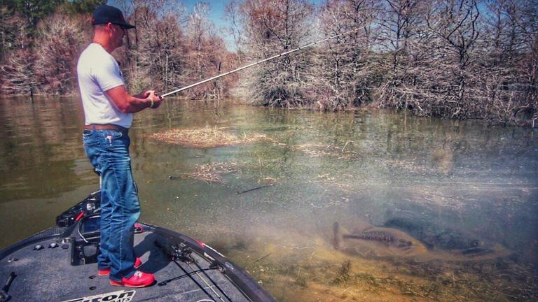 Determine the Bass Spawn Using Nature's Cues