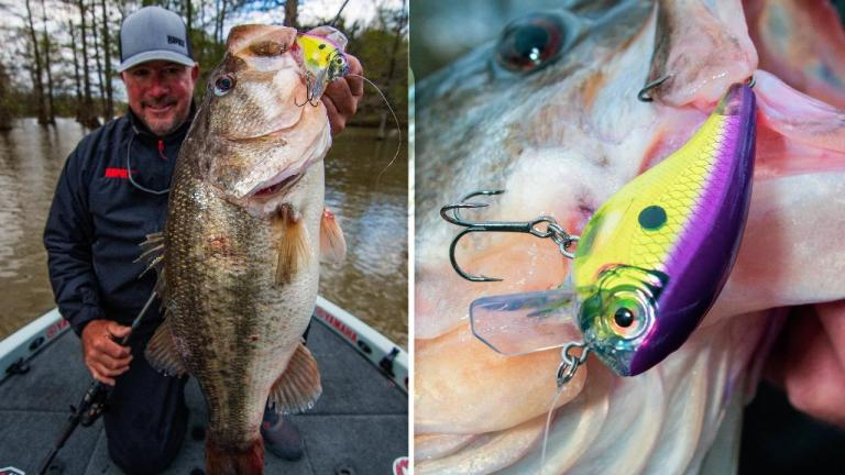 Squarebill Cranking Basics and a Look at Rapala's BX Big Brat